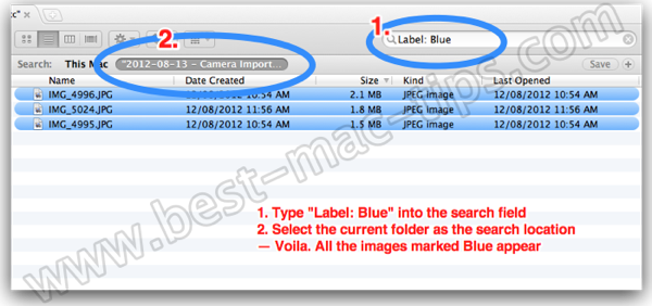 Search by File Label in Finder or Spotlight